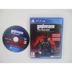 wolfenstein youngblood...